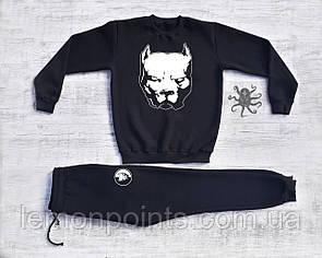Мужской спортивный костюм Pitbull (питбуль)