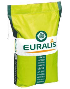 Насіння соняшнику ЯГУАР F1, А-Е, Euralis .