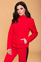 куртку женскую Modus Флориса лайт 6416, фото 2