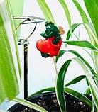Стикеры для растений, фото 2