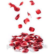 Лепестки роз ароматизированные ROSE PETAL EXPLOSION от Bijoux Indiscrets