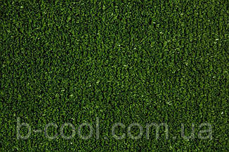 Tennis Grass, фото 2