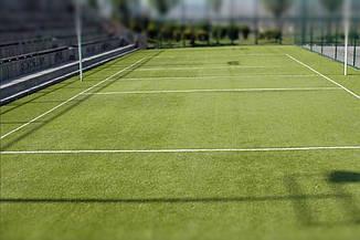 Tennis Grass, фото 3