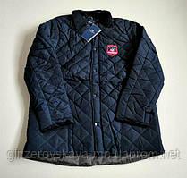 Куртки мужские стеганные (Германия)