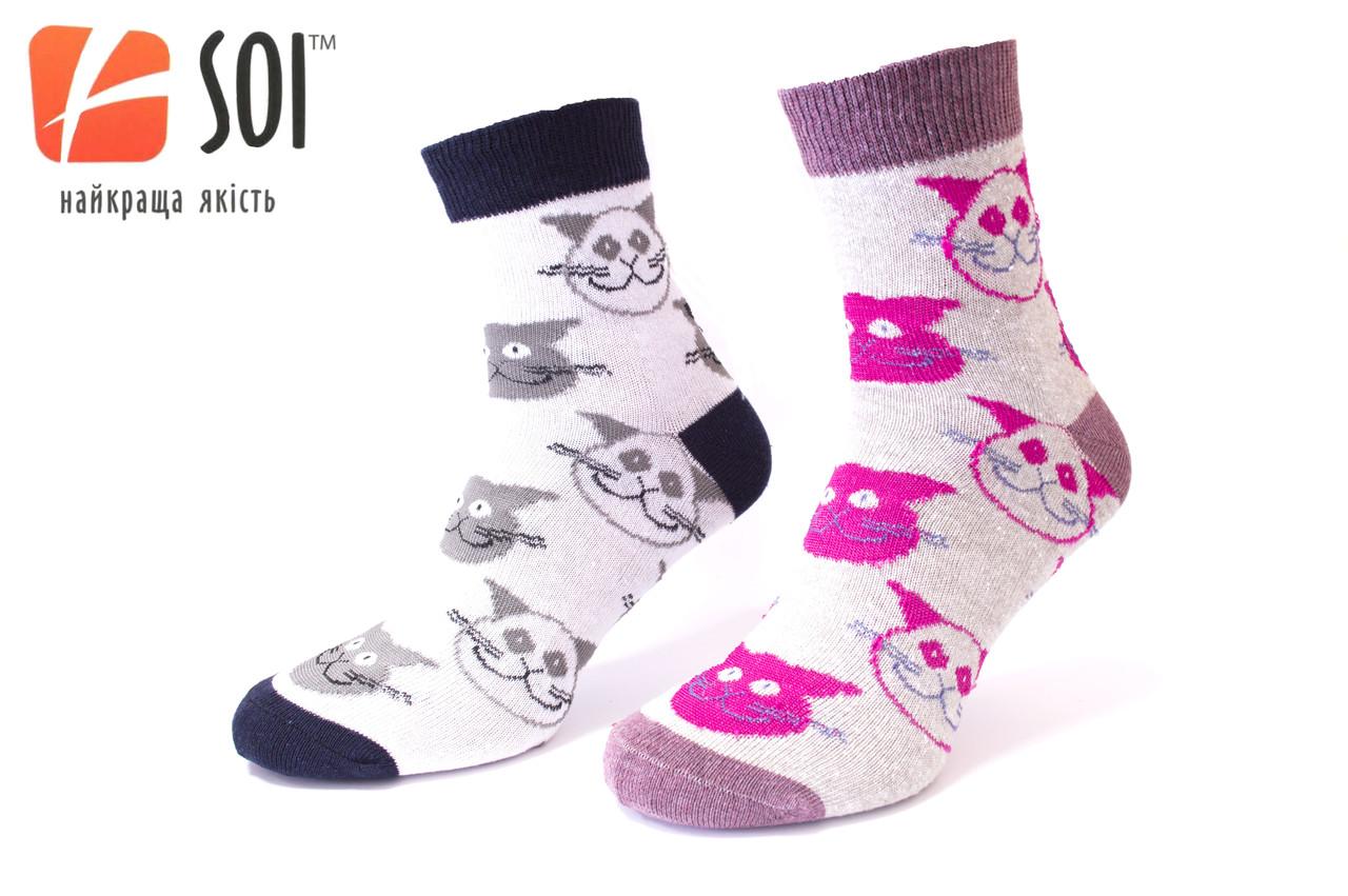 Шкарпетки спортивні жіночі SOI 23-25 р. (36-40) * 635 / котики