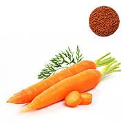 Інкрустоване насіння моркви