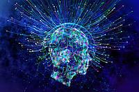 Пища для мозга: 8 добавок, стимулирующих его работу