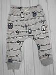 Детский комплект кофточка и штанишки с красивым принтом Совы, фото 2