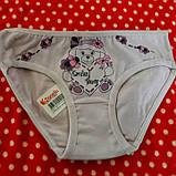 Детские трусики для девочек 2-3 года Donella, фото 3