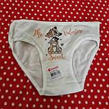 Детские трусики для девочек 4-5 года Donella, фото 3