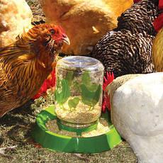 Поилки, кормушки для домашней птицы