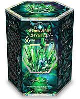 """Набор для проведения опытов """"Растущий кристалл"""" 2"""