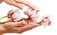 Лосьоны для рук
