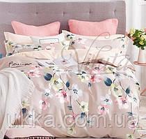 Полуторное постельное белье Вилюта 19002