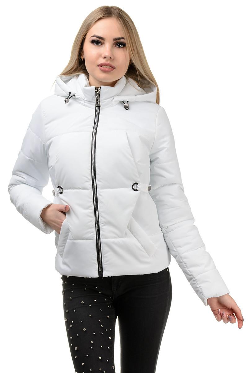 229 Демисезонная куртка «Каисса» белая (42-50)
