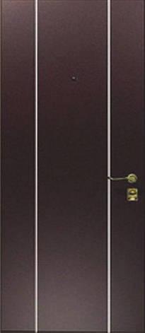 Двери квартирные, модель МЛ3 Премиум 970*2050, коробка 110 мм, металл 2 мм, молдинг 25 мм, MOTTURA, фото 2