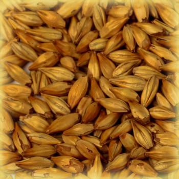 Солод пивоваренный Wheat (пшеничный)