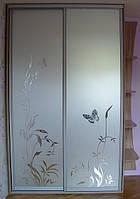 Встроенный шкаф-купе в  Харькове