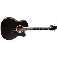 Акустическая гитара Trembita Leoton L-01 BK