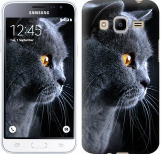 """Чехол на Samsung Galaxy J2 (2016) J210 Красивый кот """"3038u-270-19380"""""""