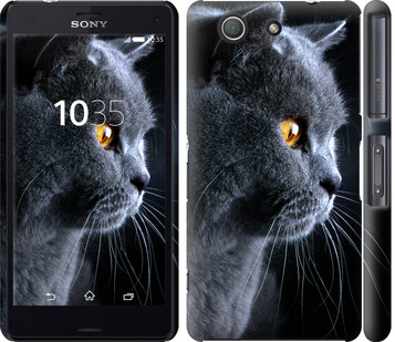 """Чехол на Sony Xperia Z3 Compact D5803 Красивый кот """"3038c-277-19380"""""""