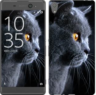 "Чехол на Sony Xperia XA F3112 Красивый кот ""3038c-399-19380"""