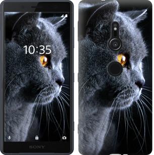 """Чехол на Sony Xperia XZ2 H8266 Красивый кот """"3038u-1378-19380"""""""