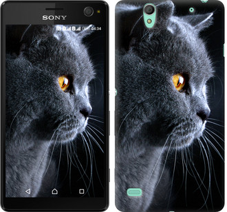 """Чехол на Sony Xperia C4 E5333 Красивый кот """"3038c-295-19380"""""""