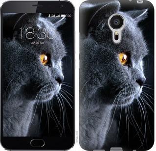"""Чехол на Meizu MX5 Красивый кот """"3038c-105-19380"""""""