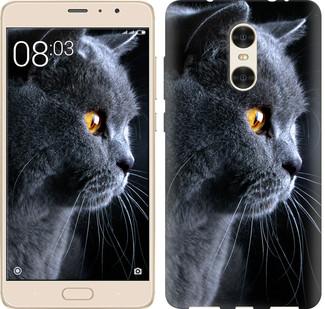 "Чехол на Xiaomi Redmi Pro Красивый кот ""3038c-342-19380"""