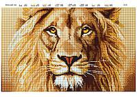 """Вышивка бисером """"Величественный Лев"""" - полная вышивка"""