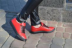 Кеды кожаные Royal Shoes 259 Красные