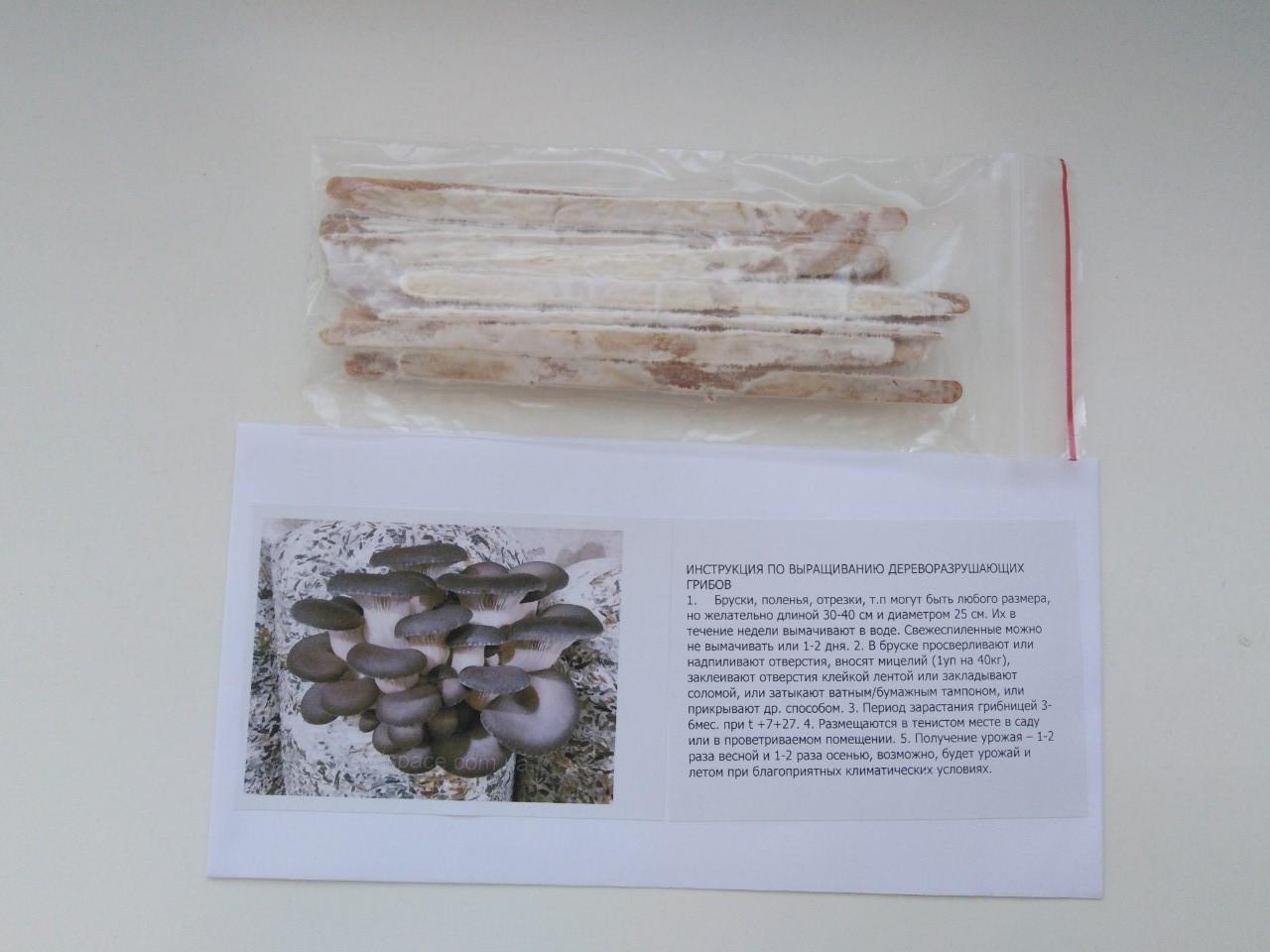 Мицелий вешенки на палочке(20шт)