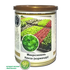 Семена на микрозелень «Кинза» 100 г, (Агромакси)