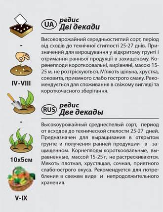 """Насіння редиски середньостиглого, для відкритого грунту """"Дві декади"""" (3 р) від Agromaksi seeds, фото 2"""