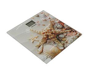 Grunhelm BES-Shell Весы напольные 180кг Ракушка, фото 2