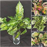 Букет листьев диффенбахии, ткань, высота 30 см.