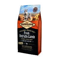 Сухий корм для собак Carnilove Fresh Ostrich & Lamb for Small Breeds зі страусом і ягням 6кг