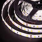 Светодиодная лента SMD 2835  (60 LED/м), теплый белый, IP20, 12В бобины от 5 метров, фото 3