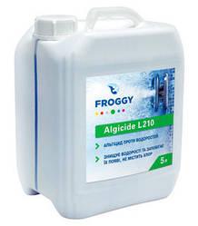 Альгицид Froggy L210 5 л для удаления водорослей