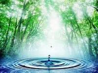 В среднем 250 миллионов человек в мире страдают от болезней, связанных с загрязнением воды