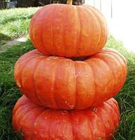 Семена тыквы Руж Виф Де Тамп, Clause 100 грамм | профессиональные