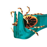 Trixie (Трикси) Tick Away Tick Remover Пинцет для удаления клещей