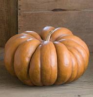 Крупноплодная ребристая тыква сорт Мускат Де Прованс, Длительное хранение, проф семена тыквы Clause 100 грамм