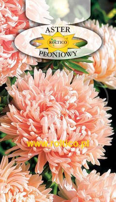 Польські насіння айстри піоновідние Лососева 0,5г, фото 2