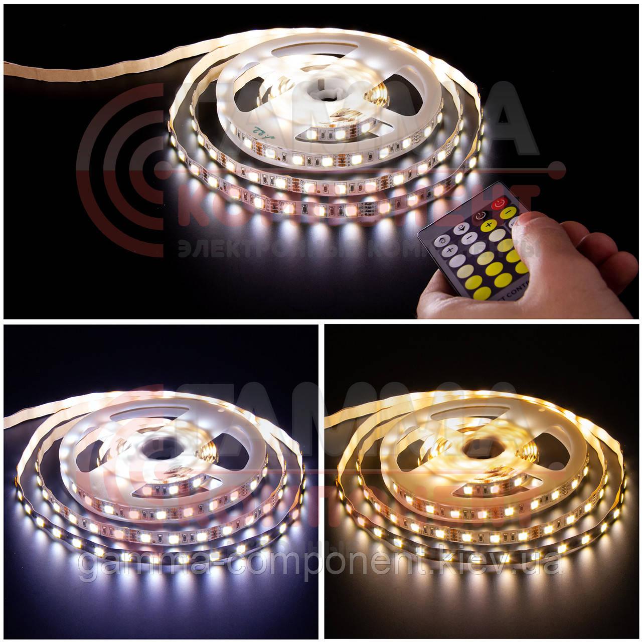 Светодиодная лента AVT PROFESSIONAL SMD 5025 (60 LED/м), белый и белый теплый, IP20, 12В бобины от 5 метров