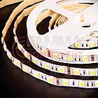 Светодиодная лента AVT PROFESSIONAL SMD 5025 (60 LED/м), белый и белый теплый, IP20, 12В бобины от 5 метров, фото 5