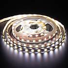 Светодиодная лента AVT PROFESSIONAL SMD 5025 (60 LED/м), белый и белый теплый, IP20, 12В бобины от 5 метров, фото 2
