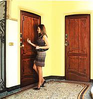 Входные итальянские двери  Bi-Elettra фабрики Dierre