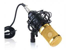 Микрофон студийный MHZ M-800